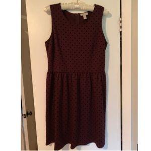 Loft Cranberry and Black A-line Dress